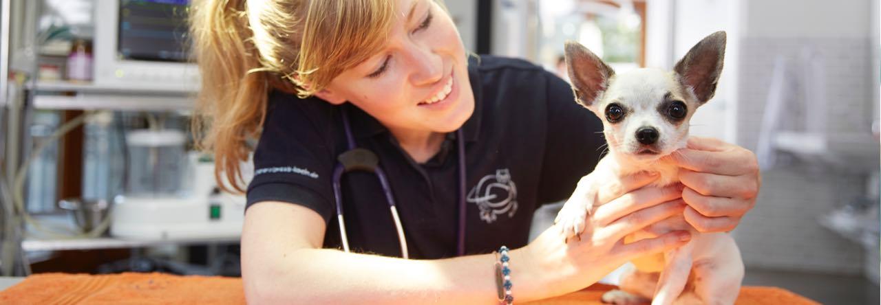 Sprechzeiten der Tierklinik