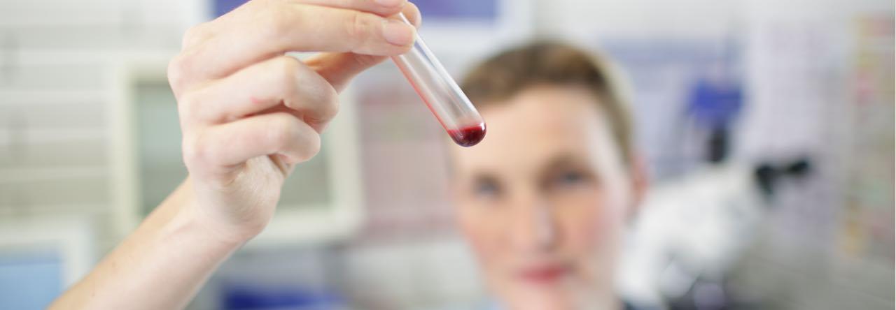 Labor Leistungen in der Tierklinik Kellerwessel